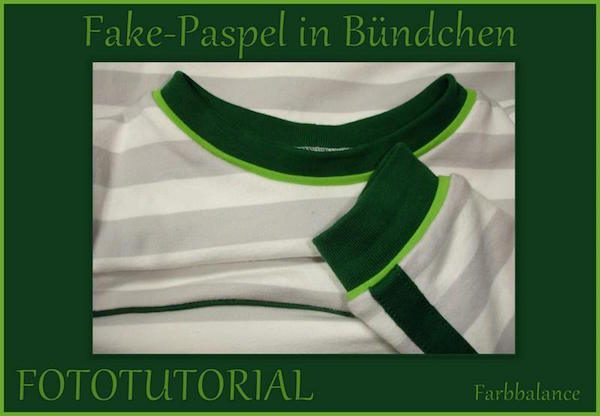Tutorial Fake Paspel